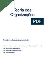 Aula 5 - A Organização e o Ambiente