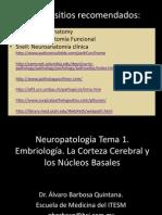 Neuro-1.Tema 1. Embrio. Corteza y Nuc. Basales.10.BARBOSA