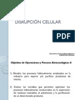 Disrupcion Celular