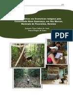 Iniciativas de Ecoturismo Indígena pela Comunidade-Nova-Esperança -Capítulo 5 - Autores Josinete Assis e Ismar Lima.