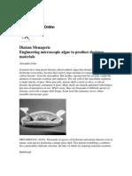 Diatom Menagerie