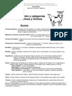 Clasificacion y categorías de los animales.2009. Argentina