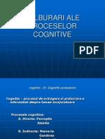 Tulburari Ale Proceselor Cognitive