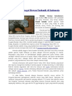 Komodo Sebagai Hewan Endemik Di Indonesia