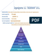 Structura organizationala( organigrama ) Dedeman Romania