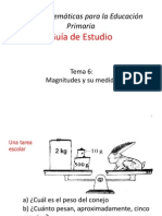 Tema 6 Magnitudes 8dic10 (1)