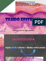 Diapositivas Tejido Epitelial.pptx Mejoradas