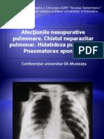 Afectiunile Pleuro-pulmonare Nesupurative (Musteata, 2010)