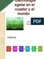 Biotecnología vegetal en el Ecuador y el mundo