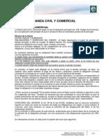 Der Priv 3 Mod 4 Fianza Civil y Comercial