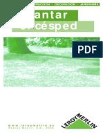 Como Plantar Cesped