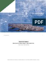 Montevideo Proceso Planificador y Crecimientos 1
