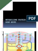 Metabolisme Asam Amino-13 [Compatibility Mode] PDF
