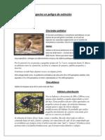 Especies en peligro de extinción.docx
