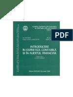 Introducere in Expertiza Contabila Si in Audit Financiar, 2008