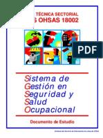 GUIA OHSAS 18002