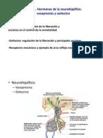 Tema 3 Fisiologi a I FM 2013