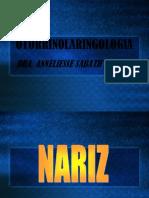 nariz-120401003005-phpapp02