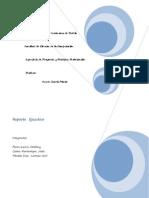 IPPP_ReporteEjecutivo