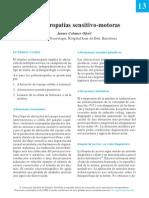 13-polineurop