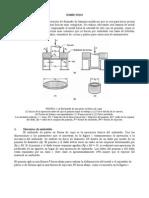 Informe - EMBUTIDO