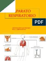 aparatorespiratorio-111110203749-phpapp02