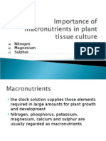 Macronutrients in Plant Tissue Culture (N,Mg,S)