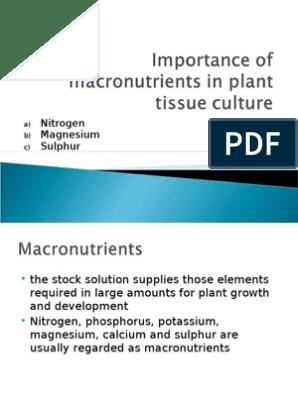 Macronutrients in Plant Tissue Culture (N,Mg,S) | Sulfur