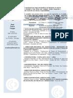Curriculum Vitae POOL Actualizado[1]
