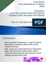 Case Report Anak AML