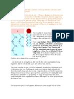 Tổng quan chung về lipid