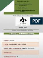 Fase 1 - Desarrollo de Emprendedores - Empresa Gamma