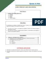 Ejercicios Practica Norma.pdf