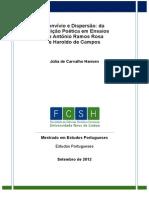 dissertação júlia de carvalho hansen