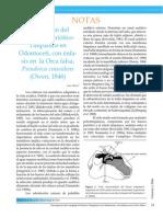 Descripción del Complejo Periótico-Timpánico en Odontoceti, con énfasis en Pseudorca crassidens.pdf