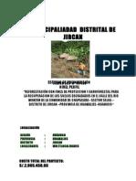 Reforestacion Para Proteccion de Valles