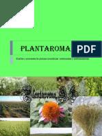 plantaroma presentacion para marchena 2014 22-01 enviar por correo.ppt
