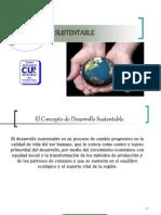 desarrollo14012014.pptx