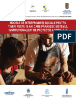 Modele de Intreprinderi Sociale Pentru Tineri Peste 18 Ani