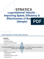 Organizational Velocity - Improving Speed, Efficiency & Effectiveness of Business Sample