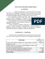 Bugetul Car Ratb Ifn 2011