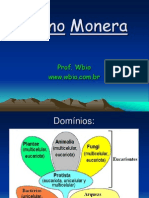 Monera Wbio