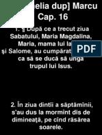 Marcu 16