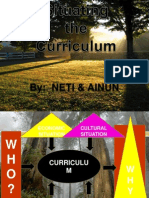 Situating the Curriculum