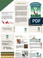 KAMMI Brochure