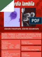 CLASE 3 Giardia Lamblia