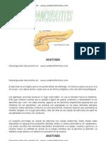 PANCREATITIS ROTAFOLIO[1], Www.cuidarenfermeria.com
