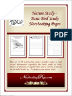 All About Birds - Basic Bird Study Notebooking Pages