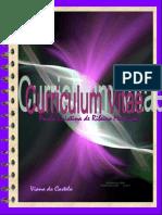 Curriculum Vitae Paula Mesquita