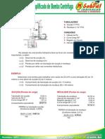 Metodo_selecao_bomba_cen.pdf